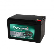 AGM BATTERY 12V 12.3AH/C20 10AH/C5 T2